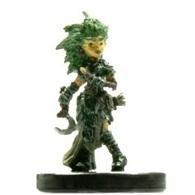 Lini, Gnome Druid