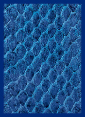 Dragon Hide Art Sleeves Blue (50)